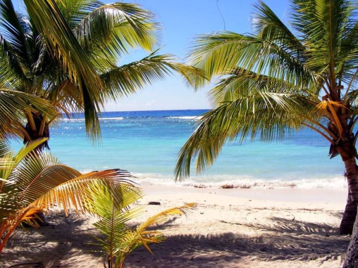ハワイ旅行。VIOのムダ毛を気にせず満喫したい!