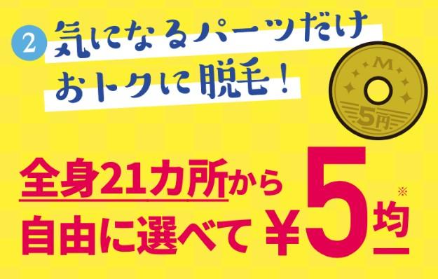 脱毛サロンミュゼ 1月のキャンペーン 1カ所5円脱毛
