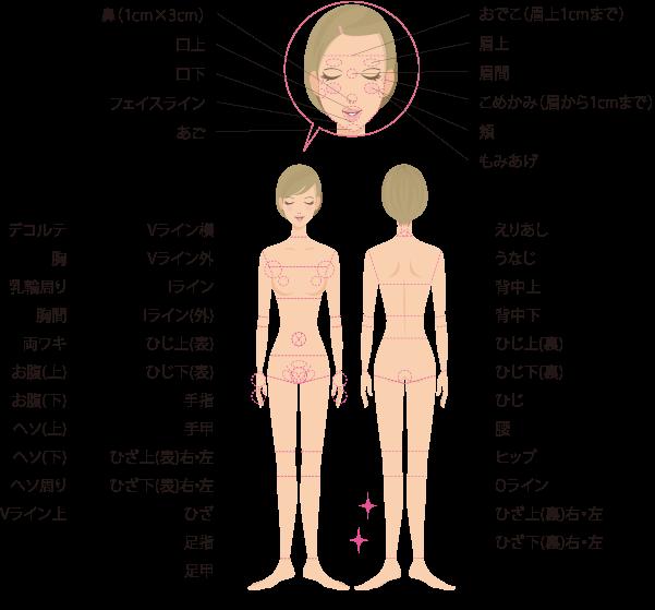 ラココのオーダーメイド脱毛の対象部位(48ヶ所)